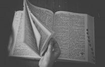 La ce ajută să-ți știi cât mai bine limba maternă