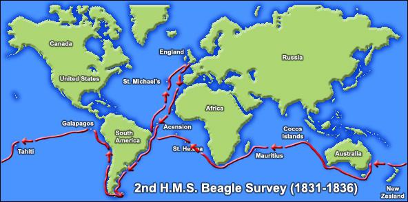 Beagle Darwin naturalist