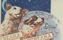 19 august 1960: Primele animale lansate în spațiu pentru un zbor dus-întors