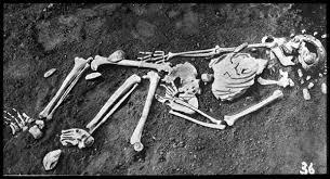 scheletul Omului din Cro-Magnon
