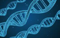 6 septembrie 1978: Este produsă insulină prin inginerie genetică