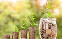 Profit.ro: Învățământul funcționează cu jumătate din finanțarea prevăzută de lege