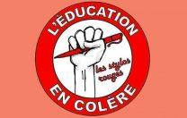 """""""Stilourile roșii""""- mișcarea civică a profesorilor din Franța. Ce spune manifestul lor"""