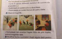 """Cum arăta enunțul exercițiului cu """"patinuar"""" de la Iași. Și un apel la prudență față de FAKE NEWS"""