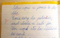"""Elev din Iași depunctat greșit, printr-o corectură agramată. """"Ce să-i răspund, domnule învățător?"""""""