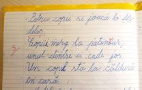 """Decizie în cazul """"Patinuar"""": Învățătorul Spiridon Andrieș a fost găsit vinovat. Părinții au spus adevărul"""