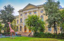Guvernul vrea să înstrăineze jumătate din terenul Muzeului Antipa. Cum răspunde instituția