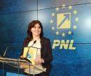 Dela0.ro: Ministrul Educației a schimbat 19 șefi de inspectorate cu membri de partid sau activiști PNL