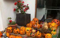 Halloween de senzaţie la Şcoala Internaţională King George