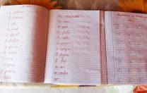 Gest impresionant al unei eleve: a copiat de mână caietele cu exerciții pentru colegii fără acces la școala online