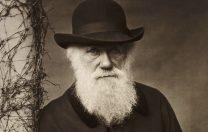 17 mai 1967: Teoria Evoluției formulată de Darwin a fost scoasă din ilegalitate în Tennessee