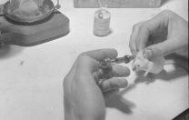 25 mai 1940: Penicilina și testele pe șoareci