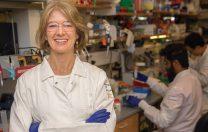 Test COVID-19 cu rezultat în 5 minute, dezvoltat la University of California, sub coordonarea unei laureate Nobel